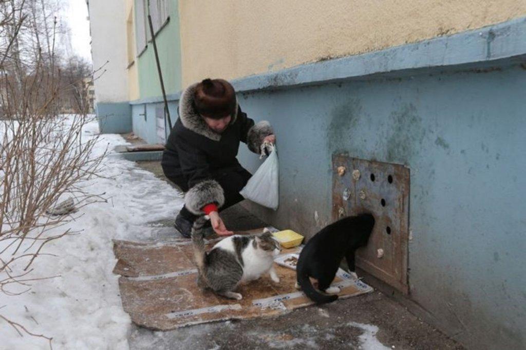 Минстрой распорядился незакрывать продухи подвалов домов